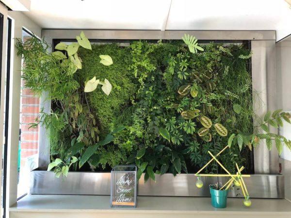 la fabrique du mur vegetal