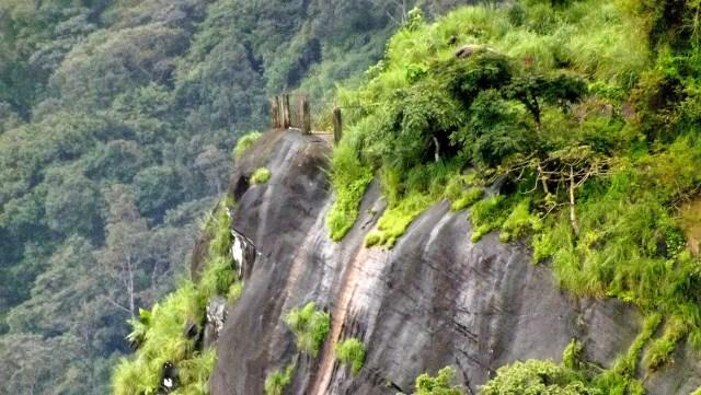 kanjirakolly-sasippara-neokerala