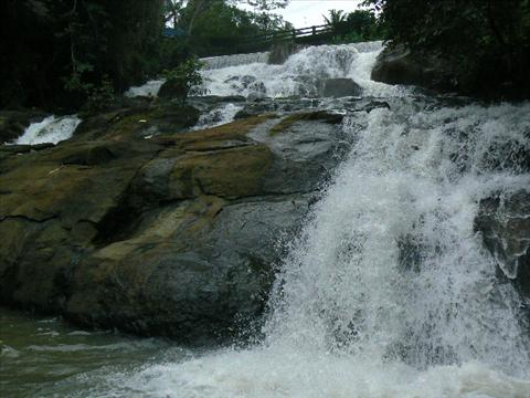 Aruvikkuzhy Waterfalls Travel Guide