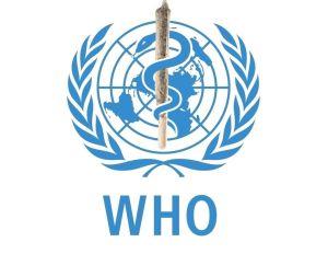 Koronavírus: Nemzetközi össztűz a WHO-ra