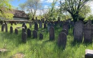 Tizennégy éves lány mentené meg az elfeledett balatoni zsidó temetőt