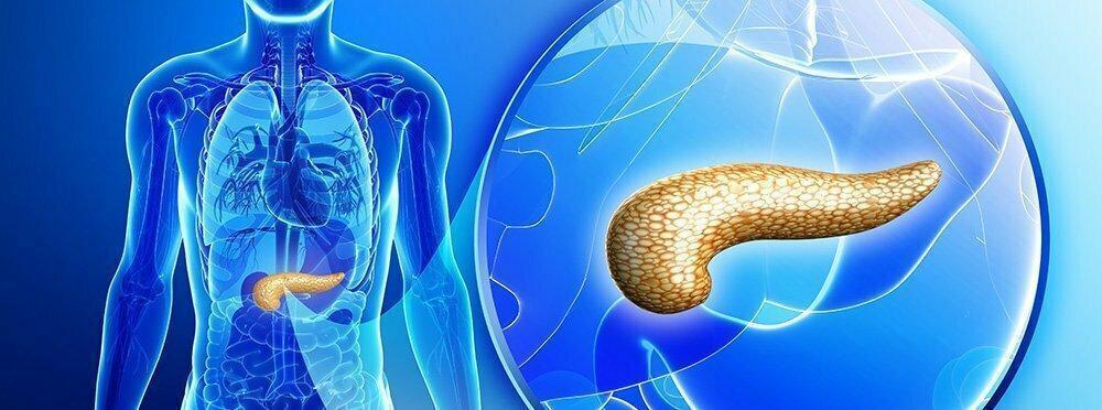 Pankreas Kanseri Nedir Neolife Kanser Merkezi - Pancreatic Cancer