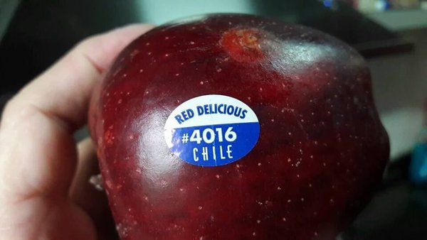 fruta israel