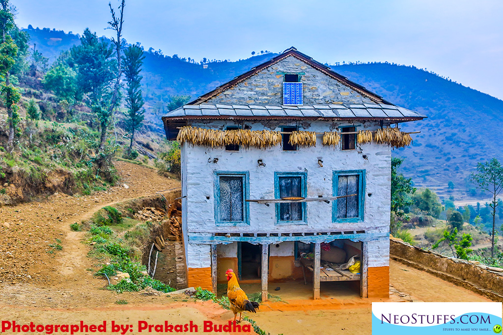 A typical Nepali village house