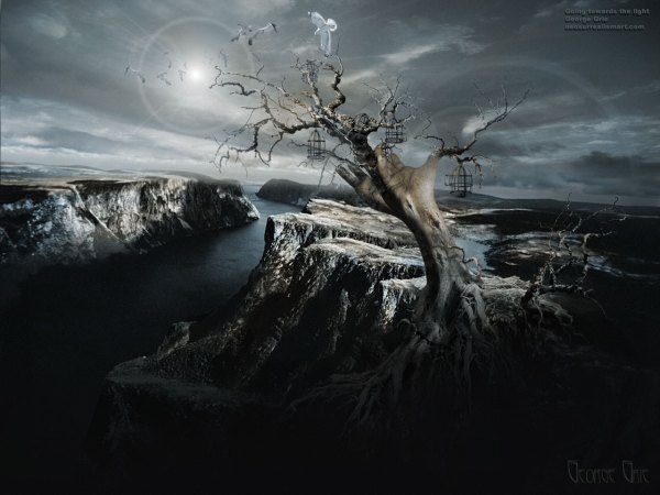 Modern Surrealism Fantasy Art
