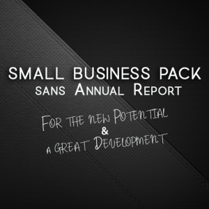 Small Business sans Annual Report Neotoria
