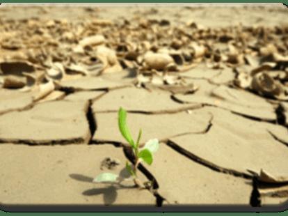 Protocolo de Kioto, el cambio climatico