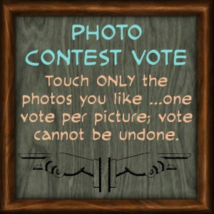 Photo Contest In-World
