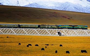 tibetrail