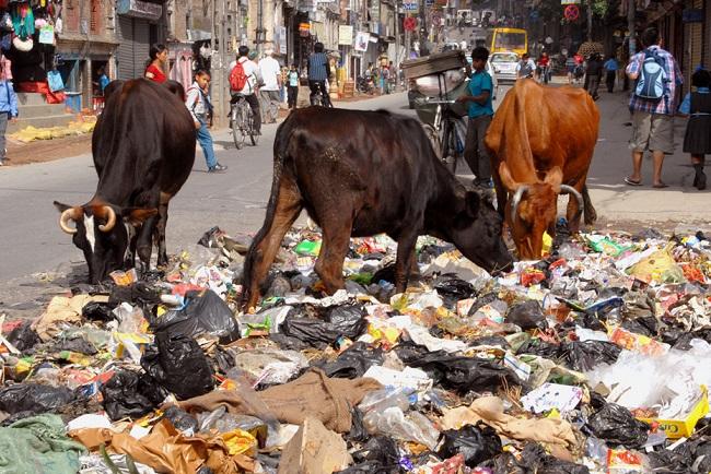 Locals obstruct waste disposal at Okharpauwa