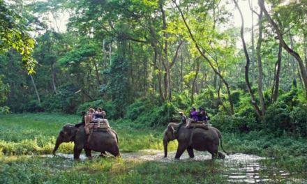 Chitwan emerging as popular film shooting destination