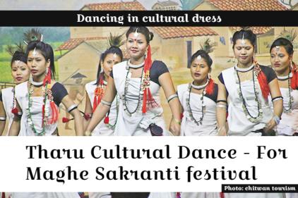 maghe sankranti - tharu cultural dance