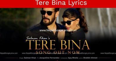 Tere Bina lyrics   Salman Khan   Jacqueline Fernandez   Ajay Bhatia
