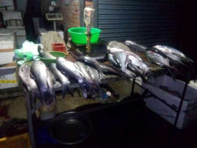 A fish shop at kalimati.