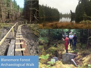 Blanemore Forest Archaeological Walk - 1