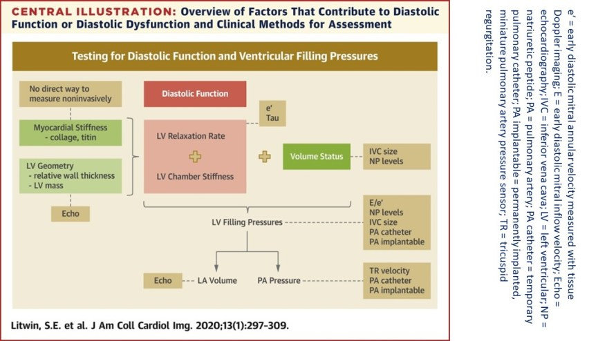 Diastolic function in combination with volume status determines LV filling pressures, which when elevated<br> cause the cardinal symptoms of heart failure. Parameters commonly measured to assess different aspects of LV filling pressures are indicated in brown.