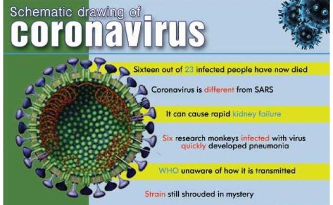 Coronavirus Middle East Respiratory Syndrome Mers Cov