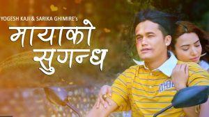 Mayako Sugandha Lyrics – The Cartoonz Crew | Yogesh kaji | Sarika Ghimir
