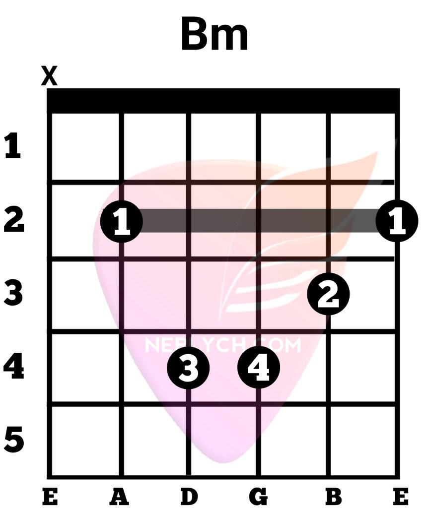 Bm Guitar Chord