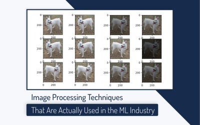 Image processing in ML industry