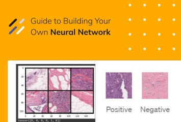 Neural networks guide