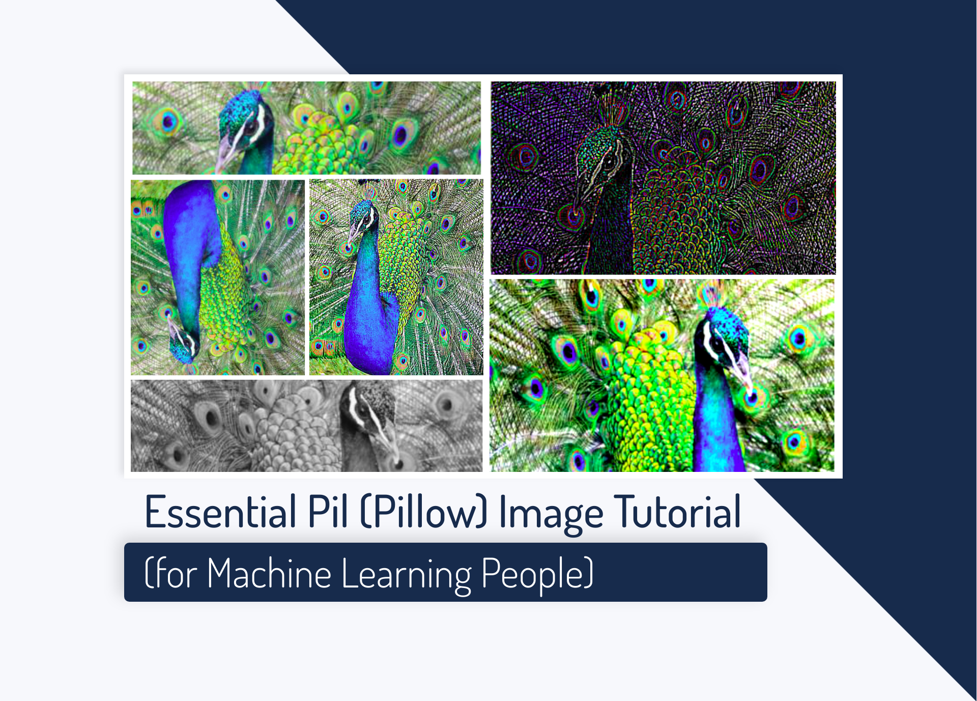 Essential Pil (Pillow) Image Tutorial (for Machine Learning People)
