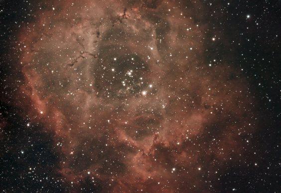 NGC2244 par Jacques :Juste avant que le ciel se couvre j'ai réussi à imager NGC2244 la Rosette dans la Licorne. 190 poses de 30 s avec la ZWO294 (-15°c) Traitement sous Pixinsight & Dxo Conditions moyennes Seeing 3 humidité 70%