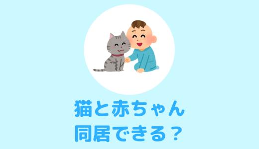 猫と赤ちゃんが一緒に暮らすために注意すべき点まとめ