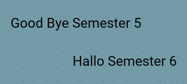 Semester 5 – Prüfungen und Ausblick