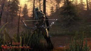 Neverwinter-Hunter-Ranger