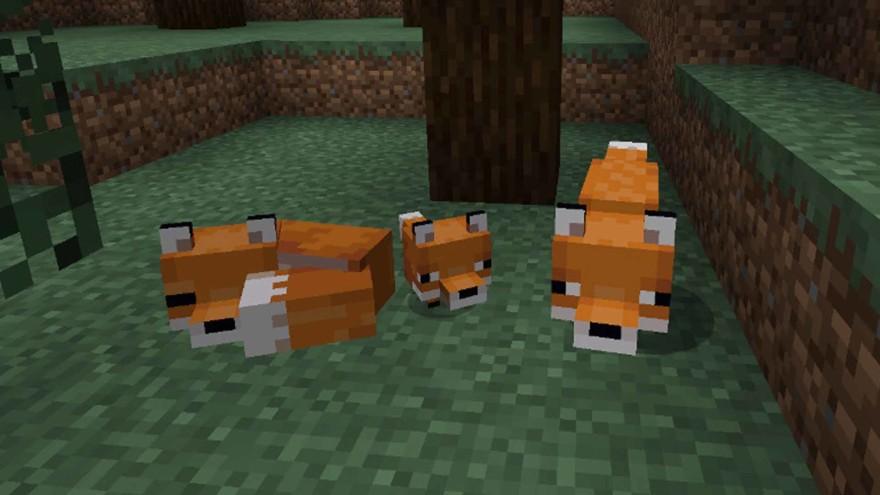 Foxes In Minecraft