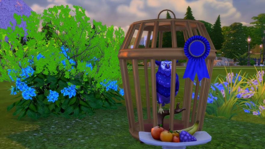 Sturdy Birdie Bird Cage