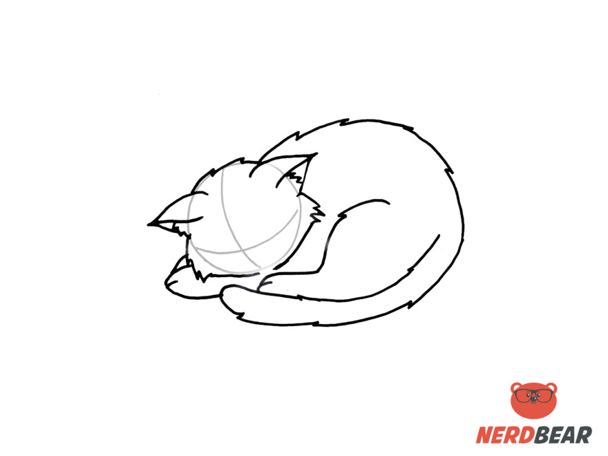 How To Draw A Sleeping Anime Cat 7