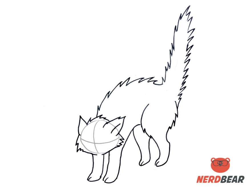 How To Draw An Angry Anime Cat 8