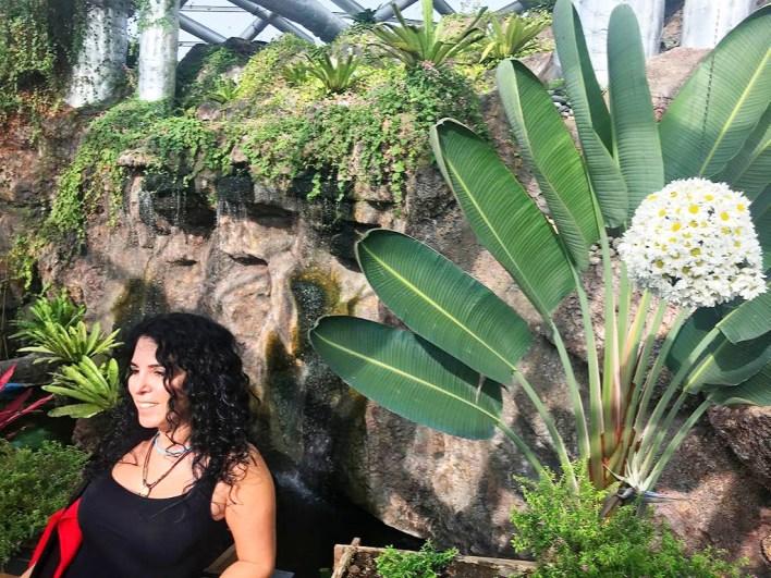 Arama Sonuçları Konya Tropikal Kelebek Bahçesi
