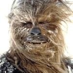 empire-strikes-back-chewbacca