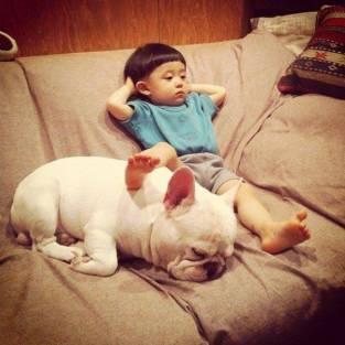 dog_friendship1