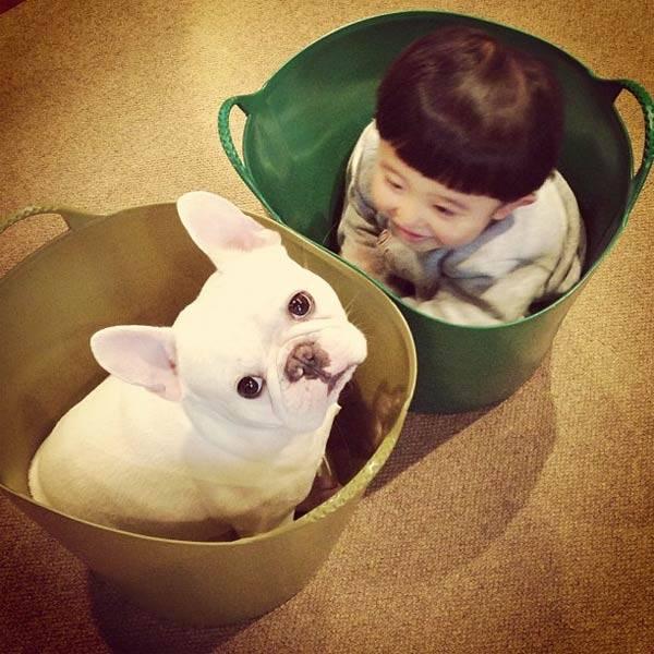 dog_friendship10
