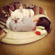 dog_friendship5