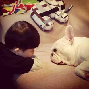 dog_friendship7