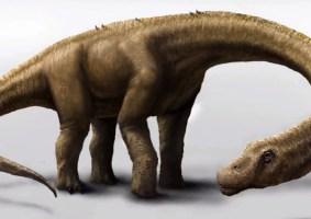 Cientistas encontram fóssil de dinossauro que tinha 59 mil quilos