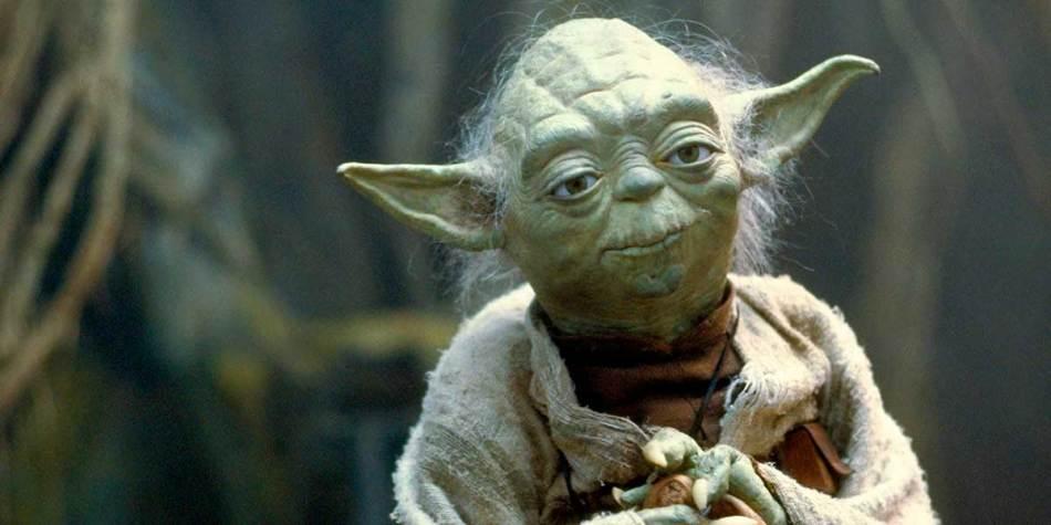 Tudo sobre a raça do Yoda, de Star Wars