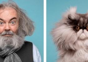 Retratos de gatos e seus donos mostram curiosas semelhanças entre eles