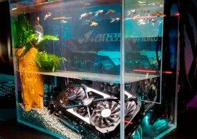 O gabinete aquário que tem peixes de verdade