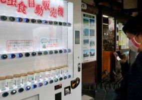 No Japão, você pode comprar petiscos de insetos em máquinas de venda