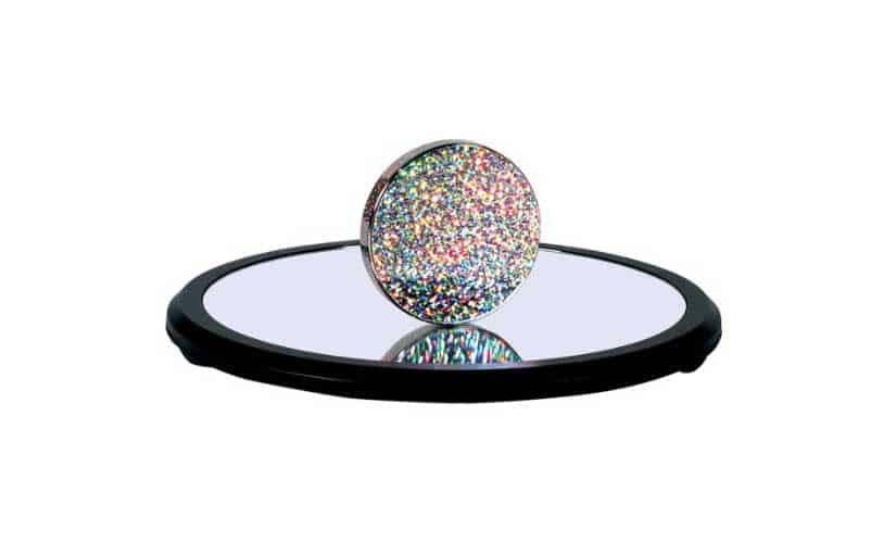 Euler's Spinning Disk