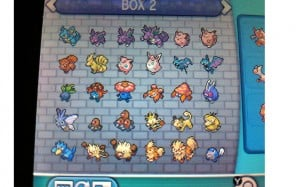pokemon pc box