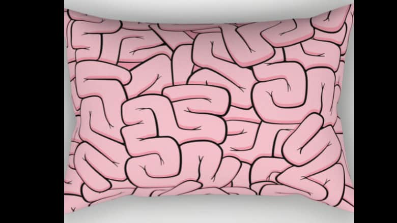 guts or brains pillow