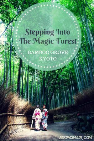 STEPPING-INTO-THE-MAGIC-FOREST-4_600