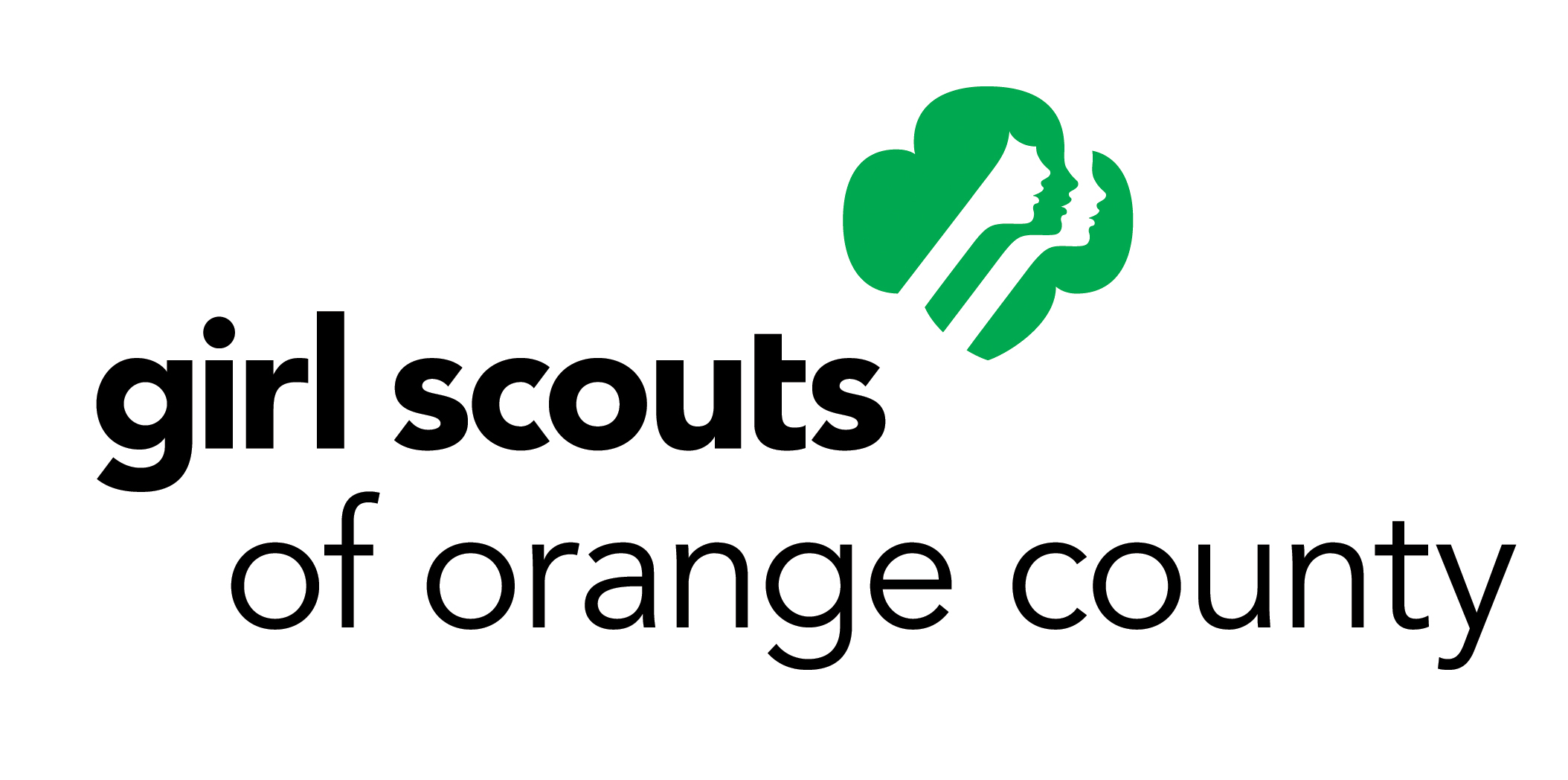 Calling all Frozen cosplayers, the Girl Scouts need your